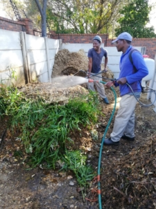 We put daily effort into restoring the soil for our organic vegetable garden.
